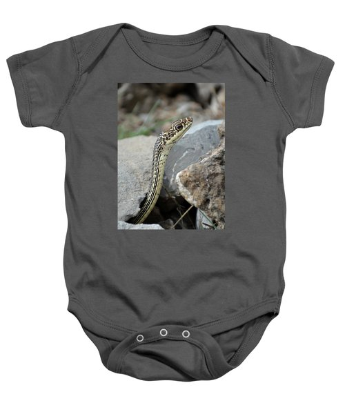 Striped Whipsnake, Masticophis Taeniatus Baby Onesie