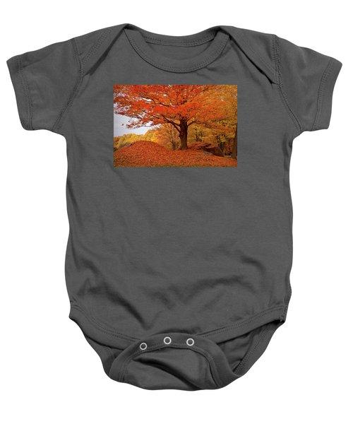 Sturdy Maple In Autumn Orange Baby Onesie