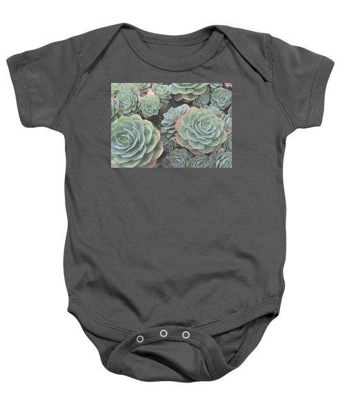Succulent 2 Baby Onesie