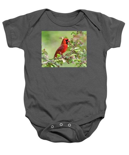 Summer Cardinal Baby Onesie