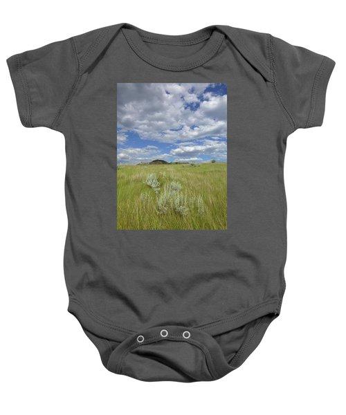 Summertime On The Prairie Baby Onesie