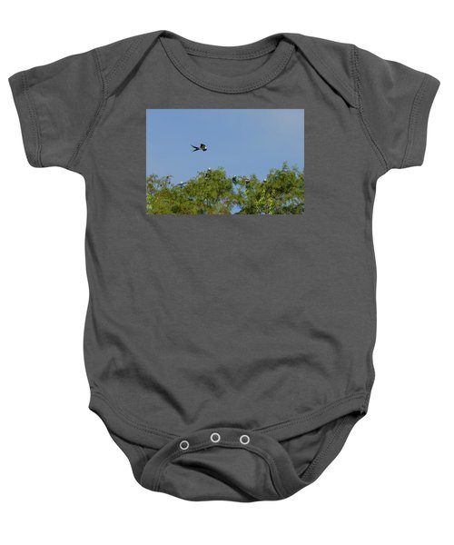 Swallow-tailed Kite Flyover Baby Onesie