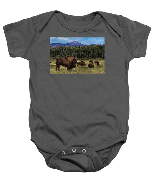 Tending The Herd Baby Onesie