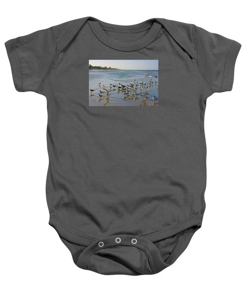 Terns And Seagulls On The Beach In Naples, Fl Baby Onesie