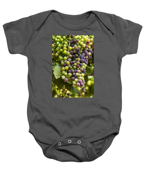 The Art Of Wine Grapes Baby Onesie