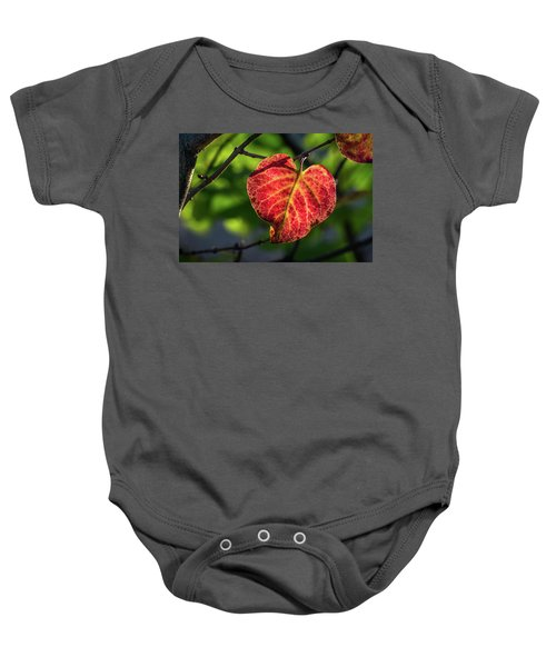 Baby Onesie featuring the photograph The Autumn Heart by Bill Pevlor