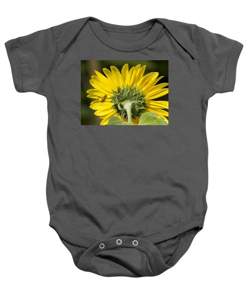 The Bee Lady Bug And Sunflower Baby Onesie