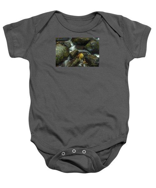 The Leaf Signed Baby Onesie