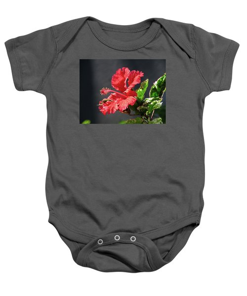 The Mallow Hibiscus Baby Onesie