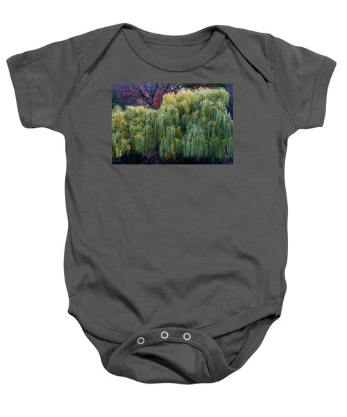 The Willows Of Central Park Baby Onesie