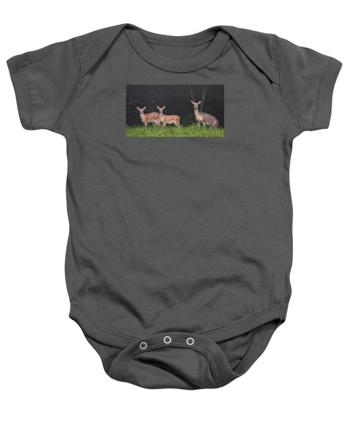 Three Does Baby Onesie