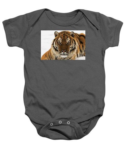 Tiger Stare Baby Onesie