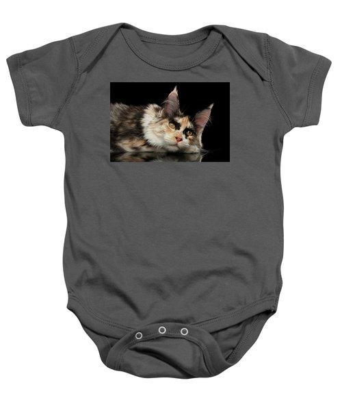 Tired Maine Coon Cat Lie On Black Background Baby Onesie