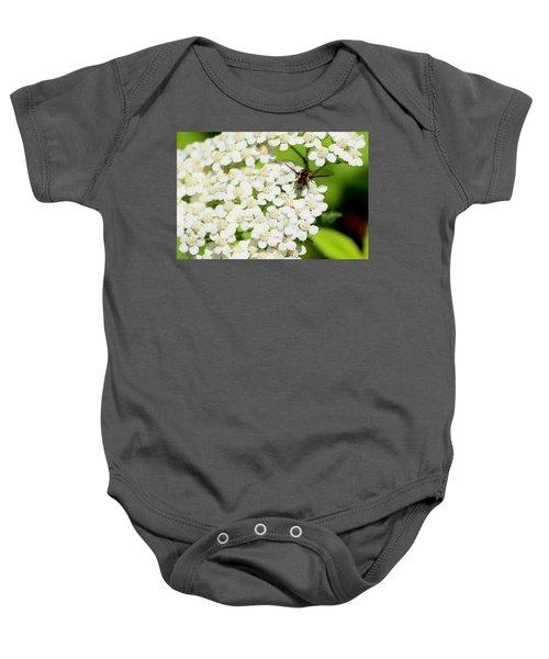 Transverse Flower Fly Baby Onesie