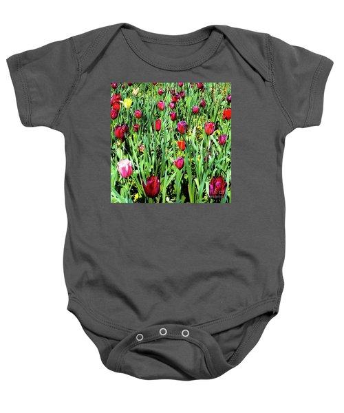 Tulips Blooming Baby Onesie