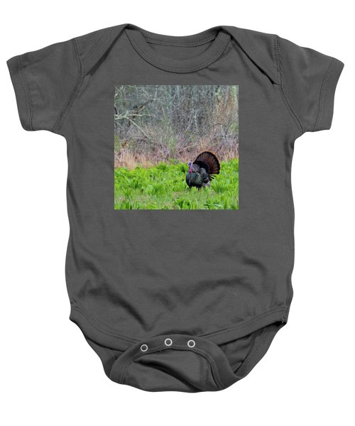 Baby Onesie featuring the photograph Turkey And Cabbage Square by Bill Wakeley