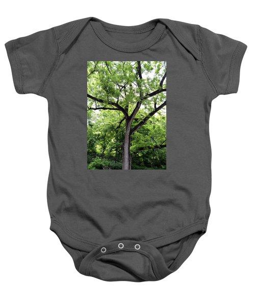 Two Tone Tree Baby Onesie