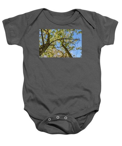 Up A Tree Baby Onesie