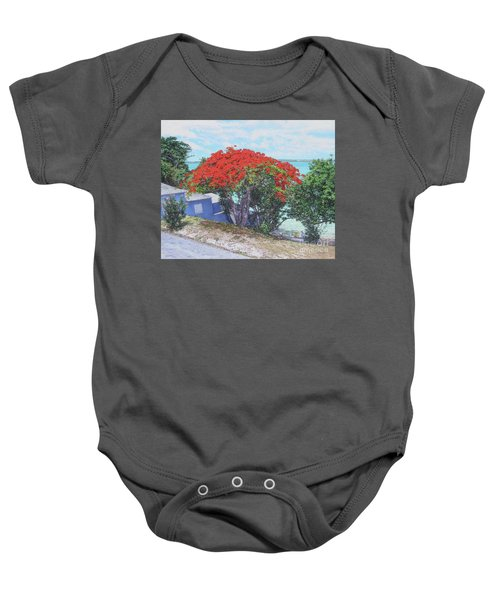 View From Hill Street Baby Onesie