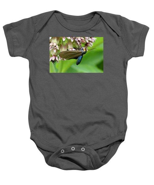 Virginia Ctenucha Moth Baby Onesie