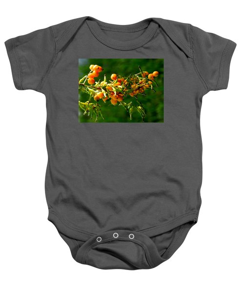 Vivid Berries Baby Onesie