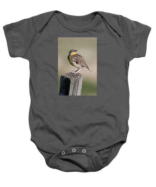 Baby Onesie featuring the photograph Western Meadowlark by Gary Lengyel