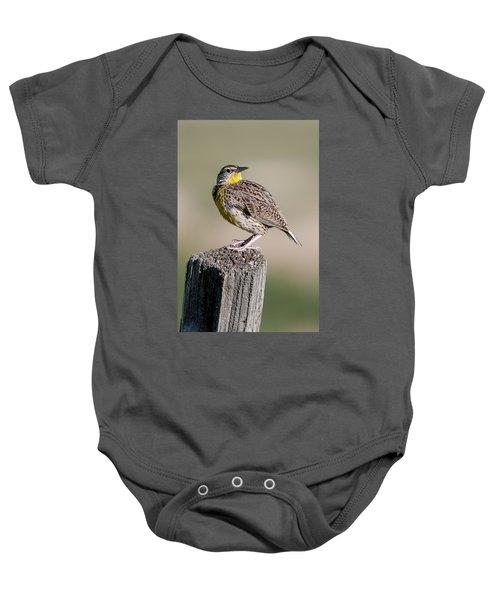 Western Meadowlark Baby Onesie