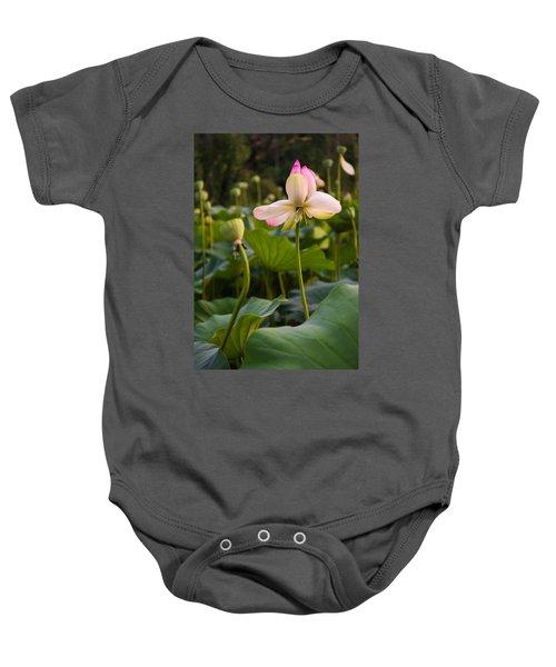Wetland Flowers Baby Onesie