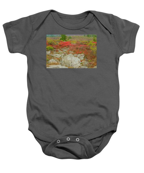 Wild Blueberries Baby Onesie