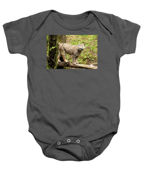 Wild Bobcat In Mountain Setting Baby Onesie