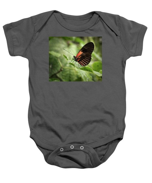Wings Of The Tropics Butterfly Baby Onesie
