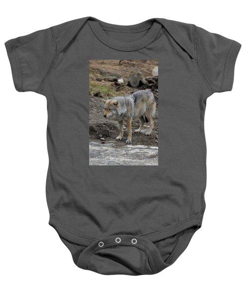 Wolf 1 Norway Baby Onesie