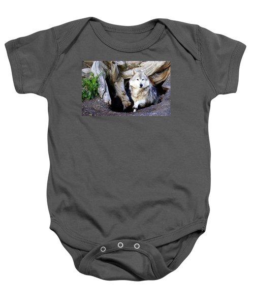 Wolf Den 1 Baby Onesie