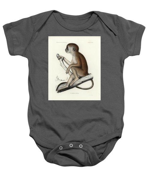 Yellow Baboon, Papio Cynocephalus Baby Onesie