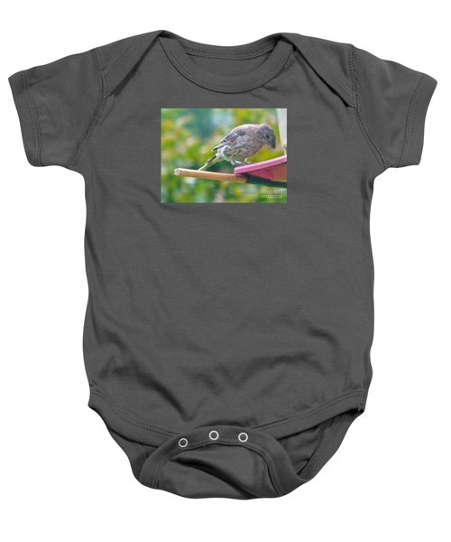Young Crossbill Female  August  Indiana Baby Onesie by Rory Cubel