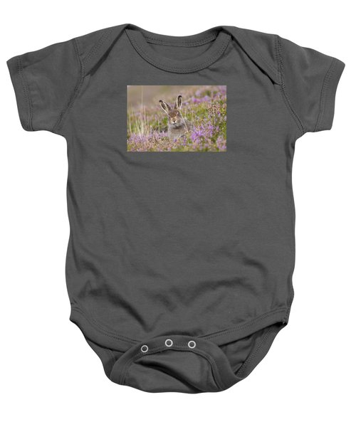 Young Mountain Hare In Purple Heather Baby Onesie