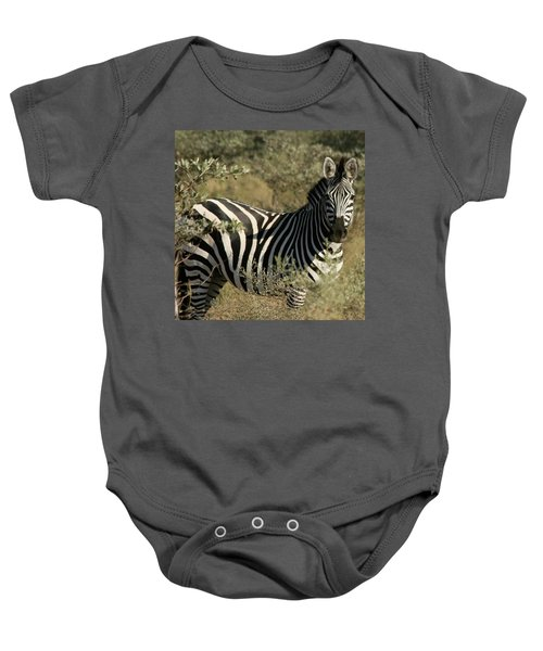 Zebra Portrait Baby Onesie