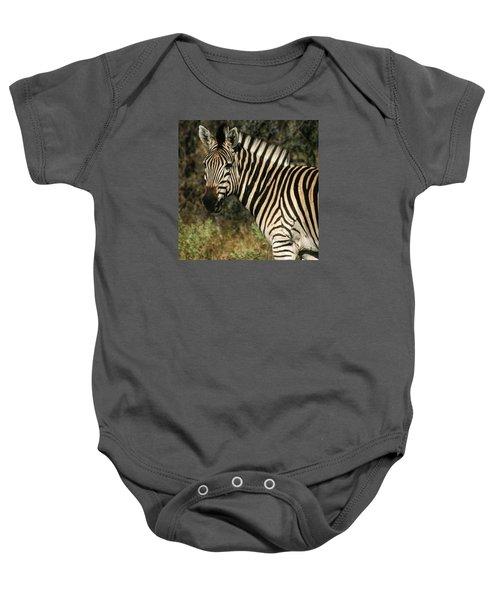 Zebra Watching Sq Baby Onesie