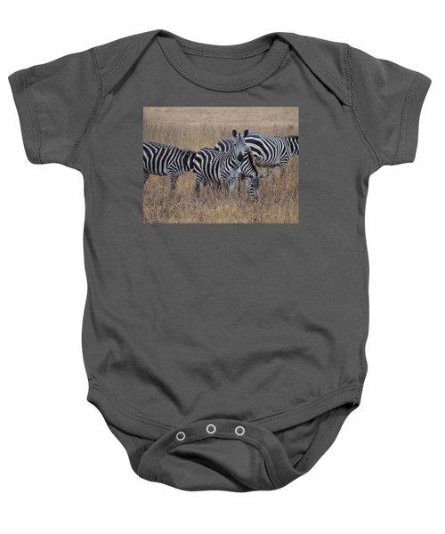 Zebras Walking In The Grass 2 Baby Onesie