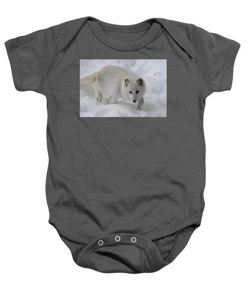 Artic Fox Baby Onesie