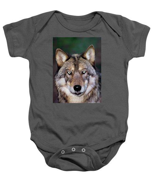 Gray Wolf Portrait Endangered Species Wildlife Rescue Baby Onesie