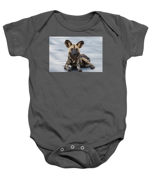 African Wild Dog Resting On A Road Baby Onesie