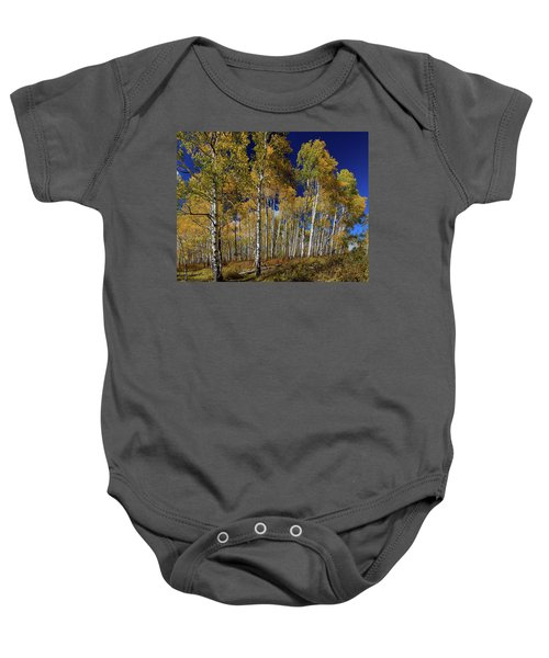 Baby Onesie featuring the photograph Autumn Blue Skies by James BO Insogna