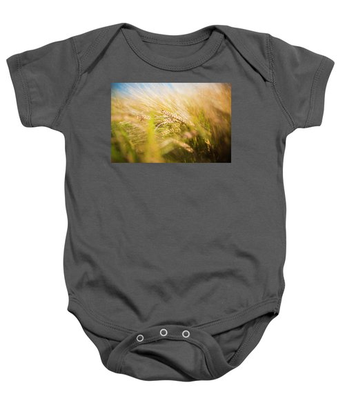 Background Of Ears Of Wheat In A Sunny Field. Baby Onesie