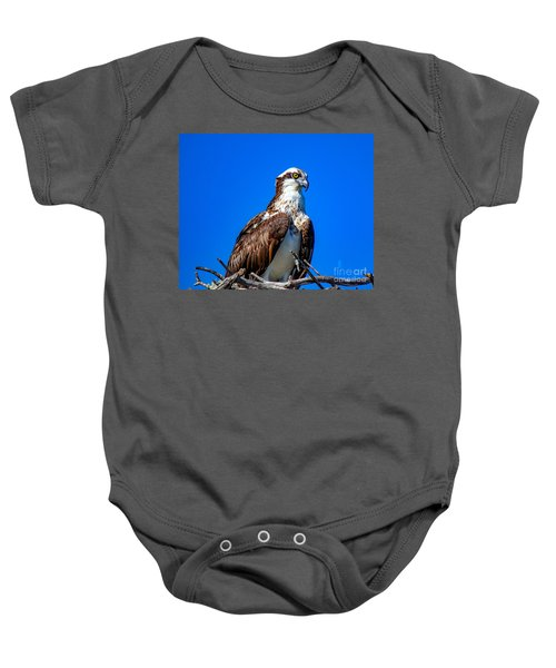 Beautiful Osprey Baby Onesie