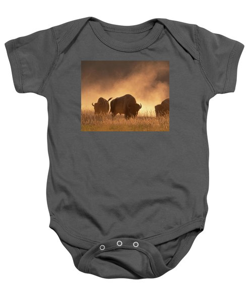Bison In The Dust Baby Onesie
