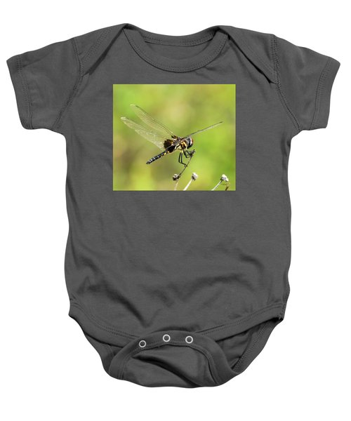 Black Saddlebags Dragonfly Baby Onesie
