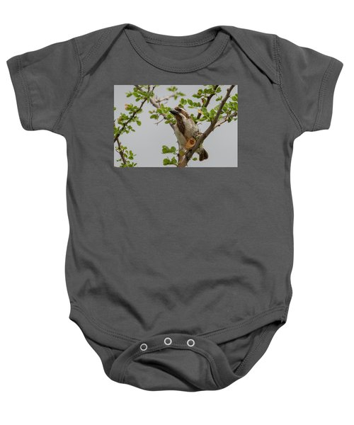 Black-throated Barbet Baby Onesie