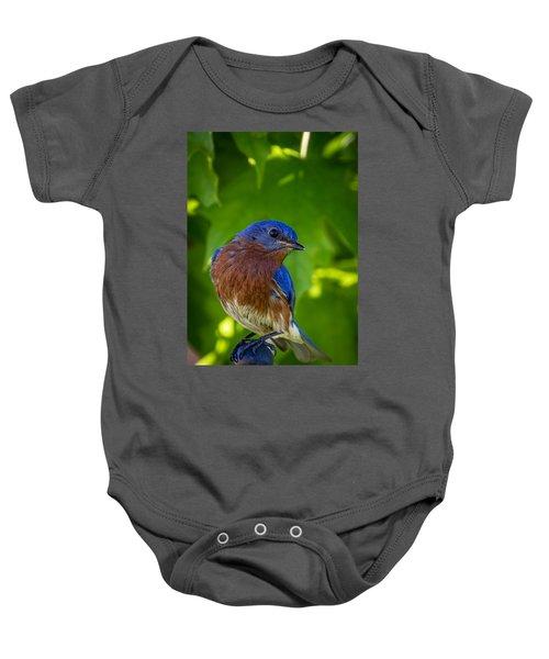 Bluebird Baby Onesie