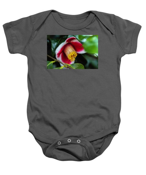 Camellia Bloom And Leaves Baby Onesie